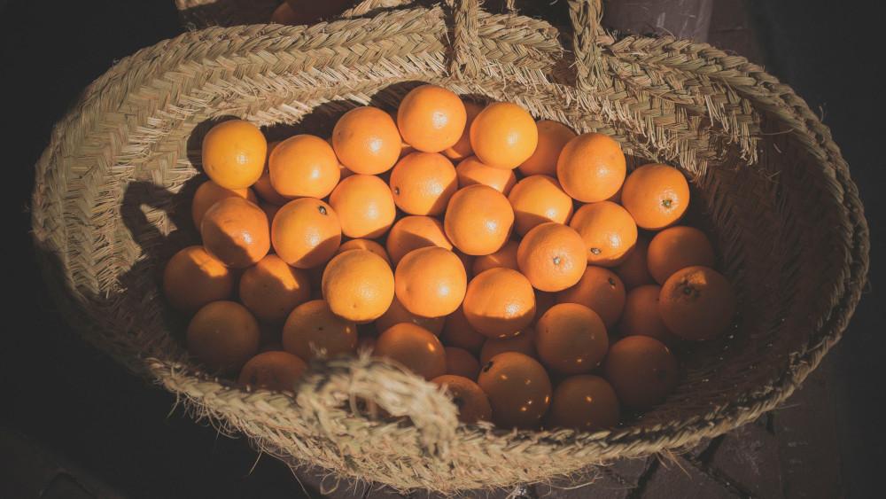 سعر الدومين سلة برتقال